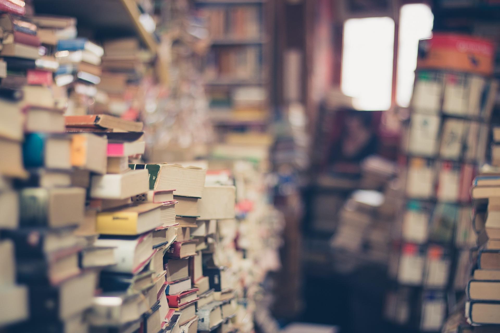 Bem-Vindo ao Bairro dos Livros